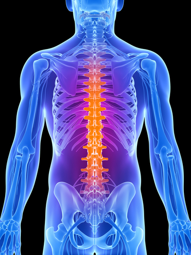 spinal cord accidents